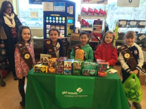 Andover Brownies 79190 at Andover Stop and Shop