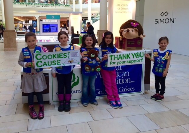 Burlington Daisy Troop 79197 at Burlington Mall